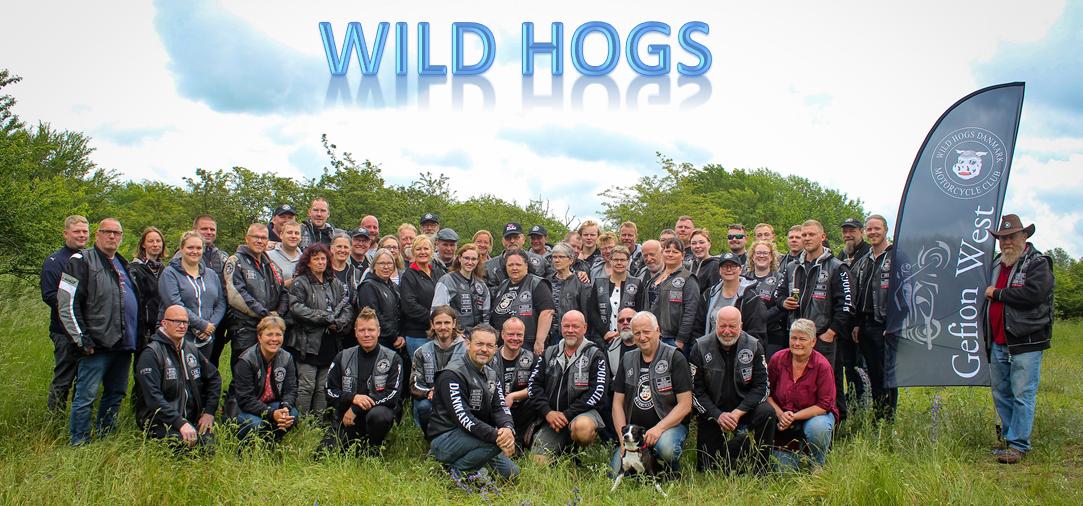 wildhogs